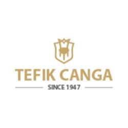 Tefik Canga Kosovo