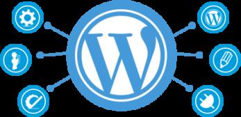 WordPress development at PROPER ICT